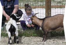 fattoria-didattica-bambina