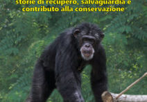 Invito Convegno Scientifico Safari Ravenna